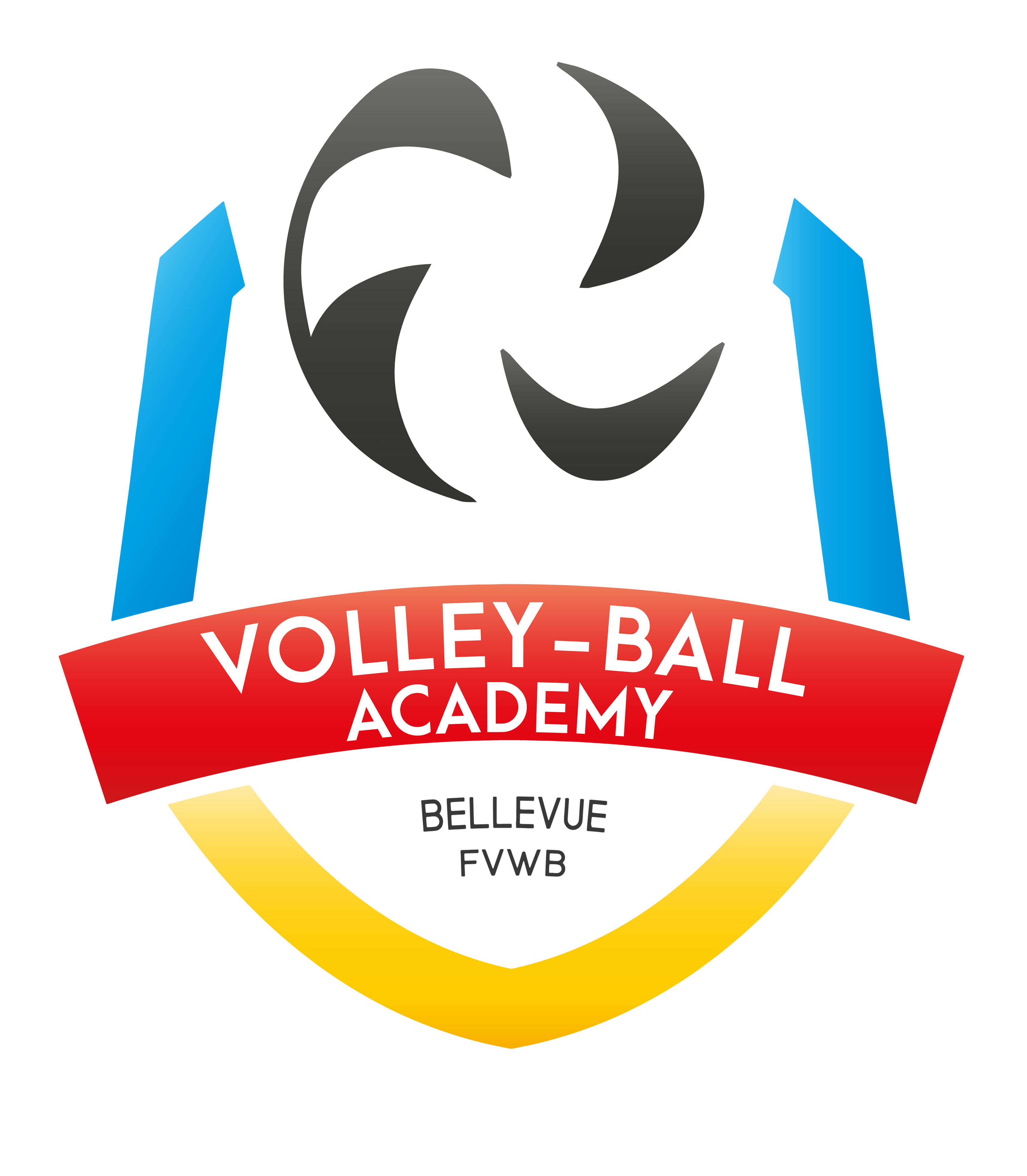Volley-Ball Academy FVWB/Bellevue